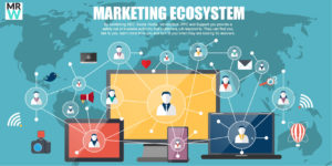 Marketing ecosystem - understand how your website fits into the bigger picture.